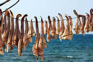 Peix sec. El secreto mejor guardado de Formentera | FaceFoodMag