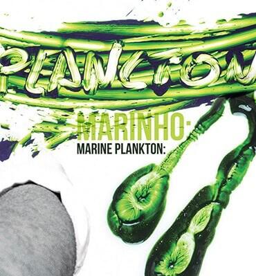 Plancton Marino: la verdadera esencia del mar en un bocado