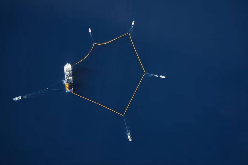 Balfegó captura toda su cuota de atún rojo en 72 horas efectivas