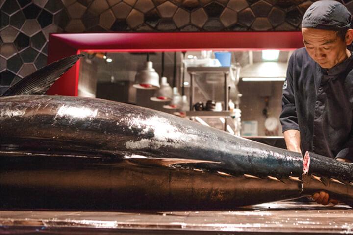 Bluefin tuna japanesse cutting.
