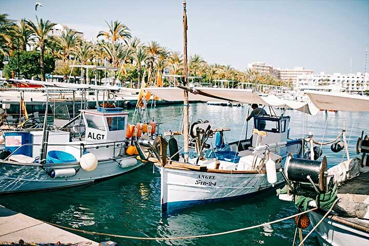 Barcos pertenecientes a la cofradía de pescadores de Sant Antoni de Portmany