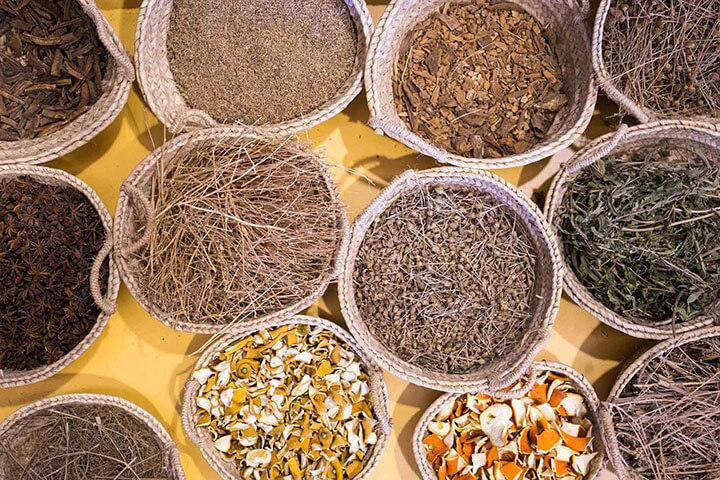 Ingredientes para la elaboración de los licores de Familia Marí Mayans. Ibiza