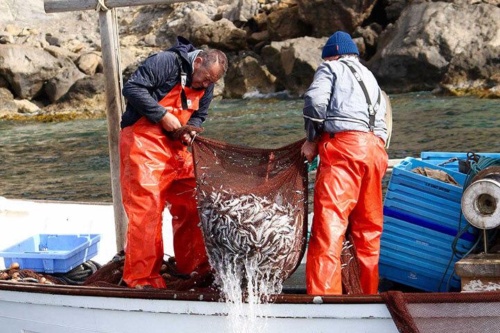 Fishing gerret. Ibiza