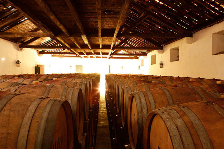 Old winery. Casa Santos Lima Lisbon