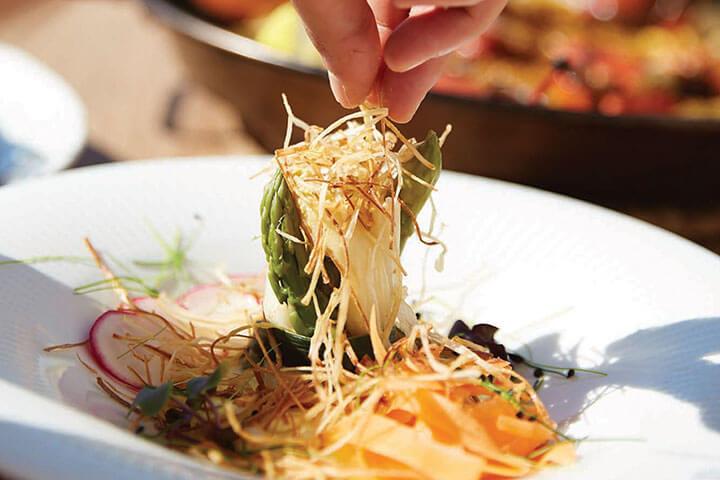 Asparagus. Seahorse Ibiza
