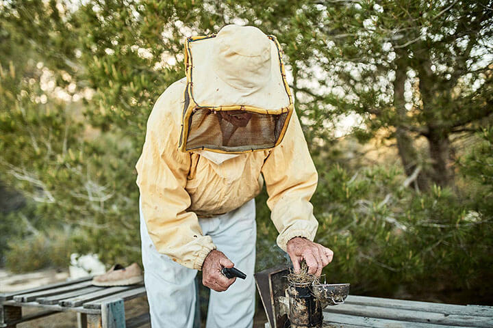 Pascual Mayans, beekeper. Formentera