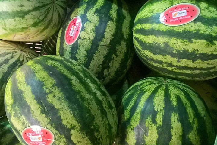 Ibiza striped watermelon