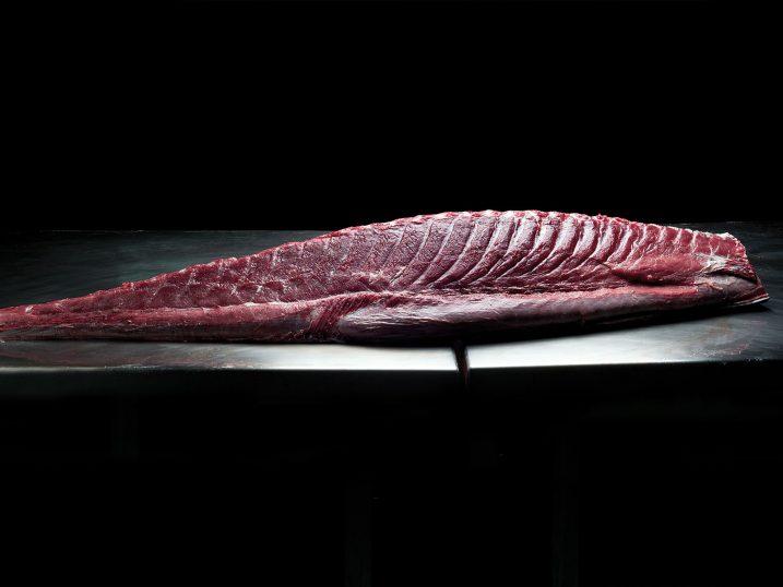 Bluefin tuna loin