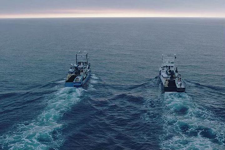 Barcos de pesca de atún Balfegó